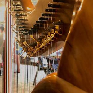 Campbell Overfelt - Harpist - Harpist / Celtic Music in Culver, Indiana