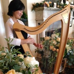 Harpist Judy Saiki - Harpist in Parsonsfield, Maine