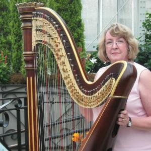 Harpist Serena O'Meara - Harpist / Classical Duo in Eau Claire, Wisconsin