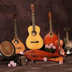 Hazeltree - Celtic Music in Kalamazoo, Michigan