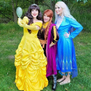 Heidi Emmer, LLC - Princess Party / Balloon Twister in Rockville, Maryland