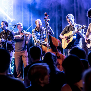 The Warren G. Hardings - Bluegrass Band in Seattle, Washington