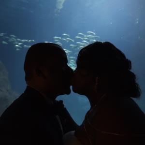 High Key Digital - Wedding Videographer / Videographer in West Babylon, New York