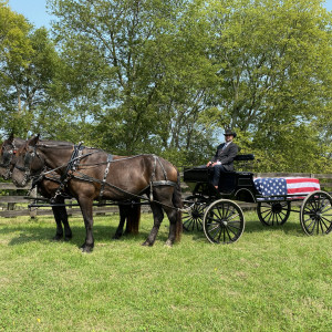 Prestige Carriage and Funeral Service - Horse Drawn Carriage / Event Furnishings in Nashville, Tennessee