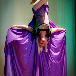 Host of Sparrows Aerial Dance and Entertainment