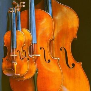 Hudson River Strings - Classical Ensemble / String Quartet in Red Hook, New York