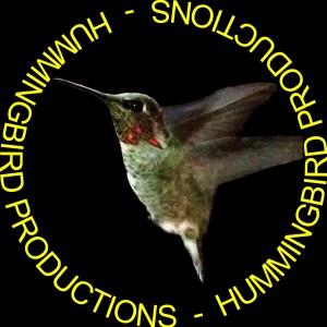 Hummingbird Productions - Videographer in Ojai, California