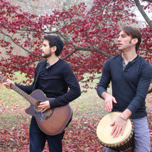 Ian & Dan - Acoustic Band in Brooklyn, New York