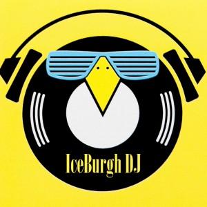 Ice Burgh DJ - Mobile DJ / Wedding DJ in Beaver, Pennsylvania