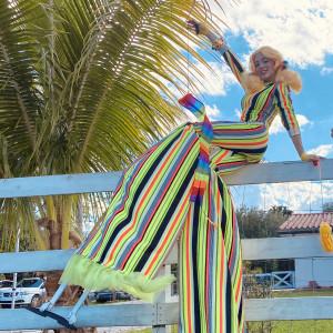 Miami Entertainer: Stilt Walker and Kids Parties - Actress in Miami, Florida