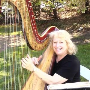 Joan Steinberg Harpist - Harpist in Philadelphia, Pennsylvania