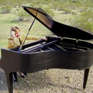 Keyboard & Komedy - Variety Entertainer in Phoenix, Arizona