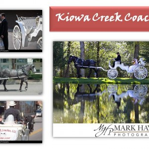 Kiowa Creek Coaches, LLC - Horse Drawn Carriage / Holiday Party Entertainment in Denver, Colorado