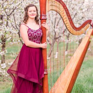 Lakeside Music Studio - Harpist in Grand Rapids, Michigan