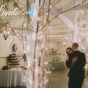 Lando Live Music & DJ - Wedding Band / Wedding DJ in Minneapolis, Minnesota