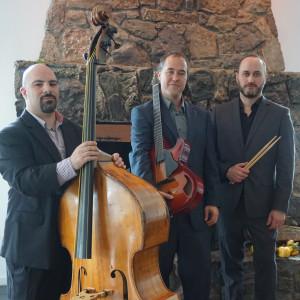 Limited Liability Trio - Jazz Band / Bossa Nova Band in White Plains, New York