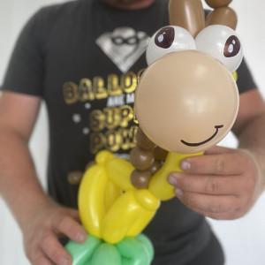 Locally Twisted LLC - Balloon Twister in Salt Lake City, Utah