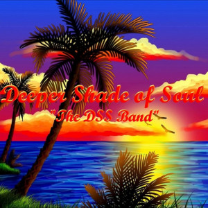 """The DSS Band """"Deeper Shade of Soul"""" - Dance Band in Tampa, Florida"""