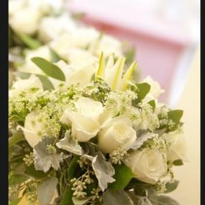 Love Story - Wedding Planner / Event Planner in Rohnert Park, California