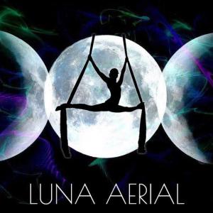 Luna Aerial Dance & Performance Team - Aerialist in Frederick, Maryland