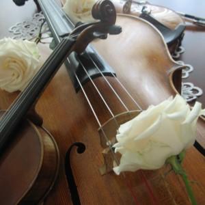 AMK, Violin - Violinist / Strolling Violinist in St Louis, Missouri