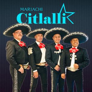 Mariachi Citlalli - Mariachi Band / Educational Entertainment in New York City, New York