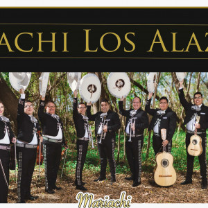 Mariachi Los Alazanes - Mariachi Band in Laredo, Texas