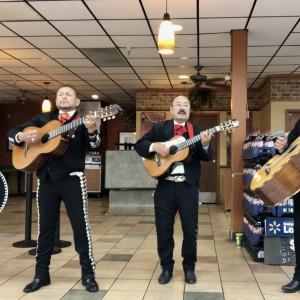 Trio Jalisco - Mariachi Band in San Jose, California
