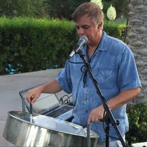 Mark Dolin Steel Drummer
