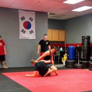 Martial Arts teacher - Educational Entertainment in Phoenix, Arizona