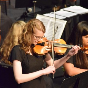 Fair's Classical Entertainment - Violinist in Knoxville, Tennessee
