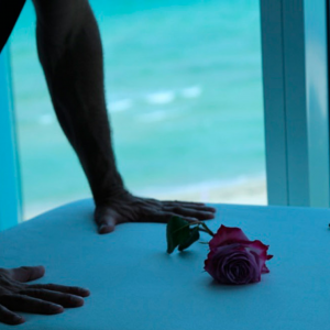 MassageCo108 - Mobile Massage in Miami, Florida