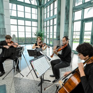 Master Musicians, Inc. - Classical Ensemble / Holiday Party Entertainment in Delray Beach, Florida
