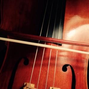 Megan Battles Music - Cellist / Pianist in Cincinnati, Ohio