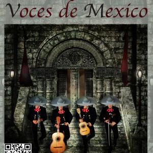 Miami mariachis - Acoustic Band in Miami, Florida