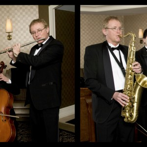 Mike Davis Trio - Classical Ensemble / Classical Duo in Traverse City, Michigan