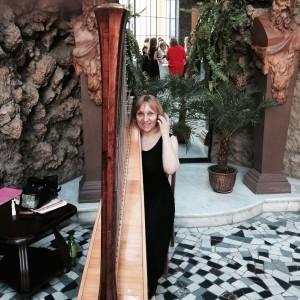 AMAZING HARP - Harpist in Ewing, New Jersey