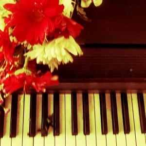 Minnesota Event Pianists - Pianist / Jazz Pianist in Minneapolis, Minnesota