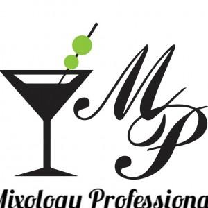 Mixology Professionals Event Staffing - Bartender / Caterer in Sicklerville, New Jersey
