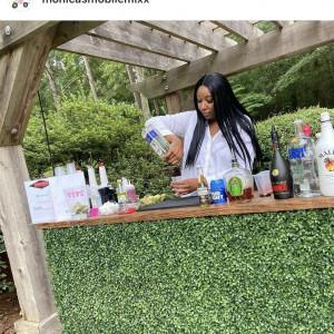 Monica's Mobile Mixx - Bartender in Atlanta, Georgia