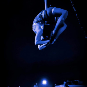 Moonchild Aerial Arts - Aerialist / Circus Entertainment in Milwaukee, Wisconsin