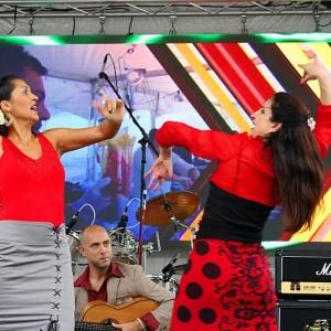 MosaicoFlamenco - Flamenco Dancer in Birmingham, Alabama
