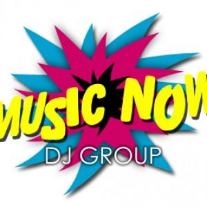 Music Now DJ Group - Mobile DJ / Wedding DJ in Libertyville, Illinois