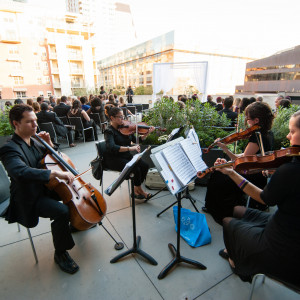 Musical Discovery Chamber Players - String Quartet in Austin, Texas