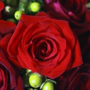 Kristine Nastasi Designs - Event Florist in Baton Rouge, Louisiana