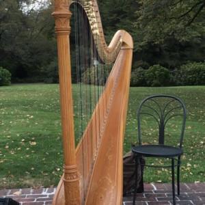 New York Harpist - Harpist in Glen Cove, New York