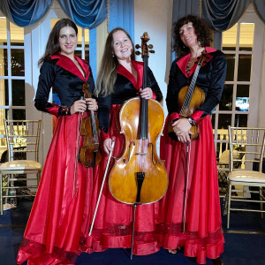NY Music Entertainment - String Quartet in Roslyn Heights, New York
