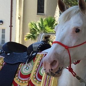 O'Hara Family Farm - Horse Drawn Carriage / Indian Entertainment in Arbuckle, California