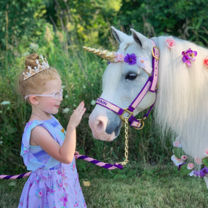 Paige's Pony Parties LLC - Pony Party / Animal Entertainment in Riga, Michigan