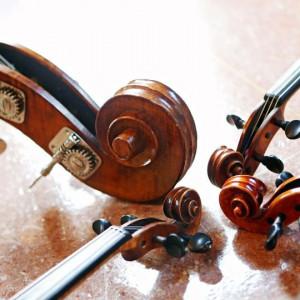 Pan String - String Quartet in Baton Rouge, Louisiana